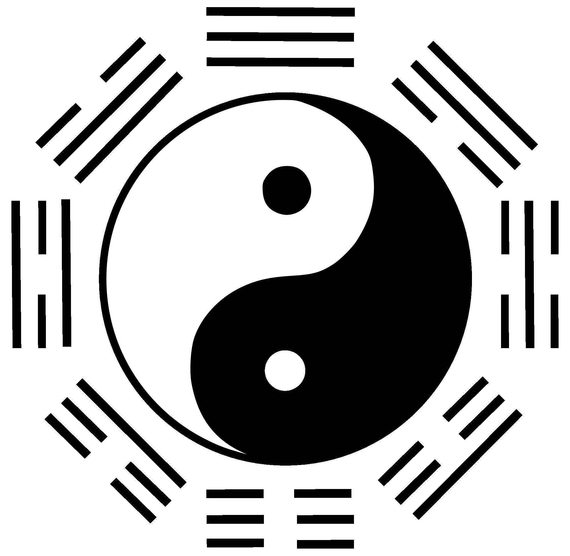 Life | Ying Yang Icon