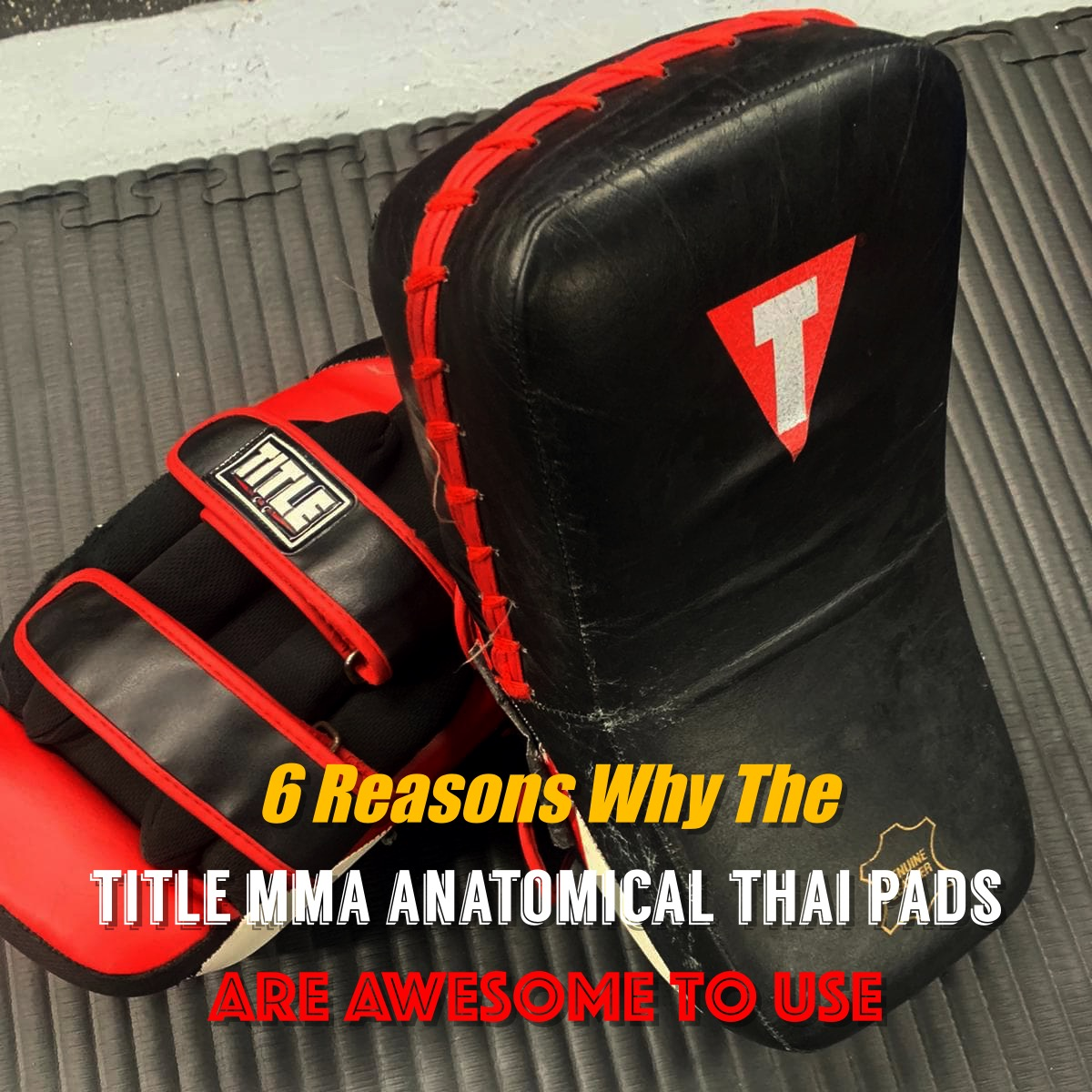 Title MMA Anatomical Thai Pads