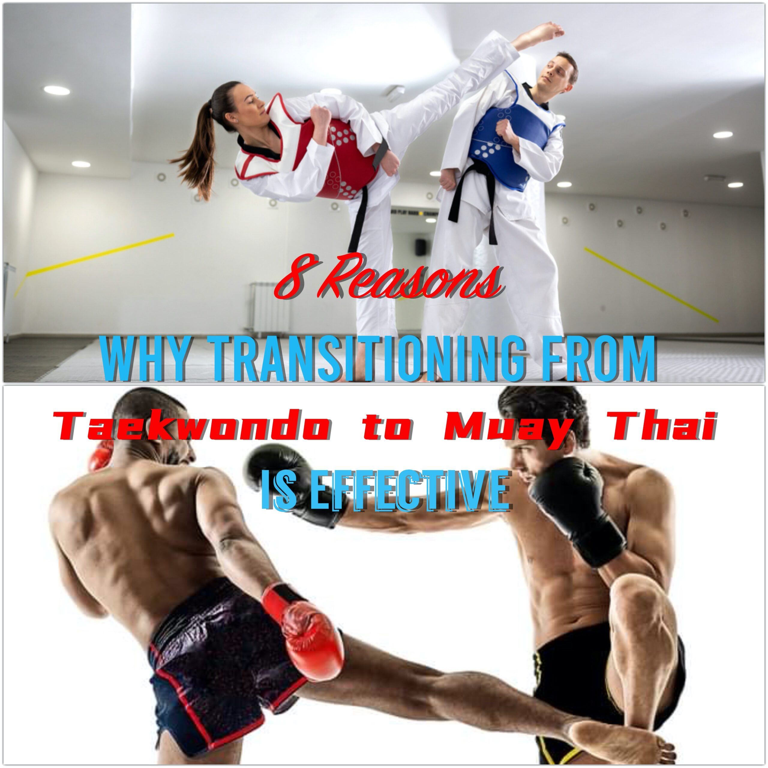 8 Reasons Why Transitioning From Taekwondo to Muay Thai Is Effective