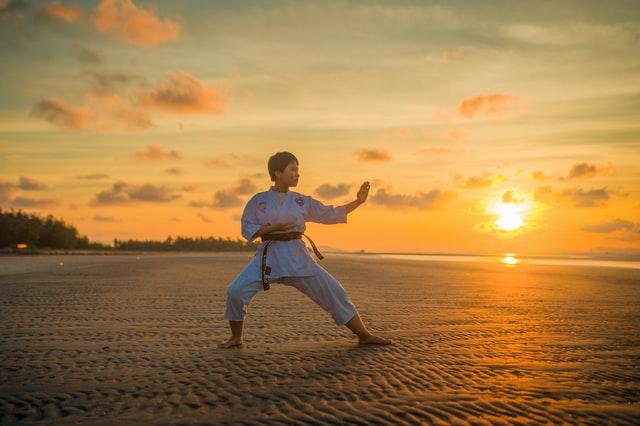 Life Changer   Karate & Life